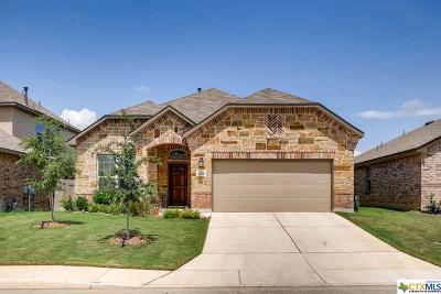 San Antonio Single Family Home For Sale: 22515 Carriage Bush