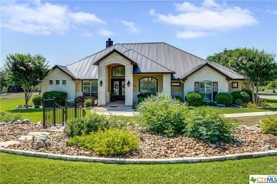 Comal County Single Family Home For Sale: 10906 Dry Stack