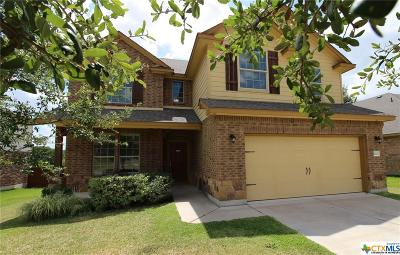 Spanish Oaks Single Family Home For Sale: 5202 Sulfur Spring Drive
