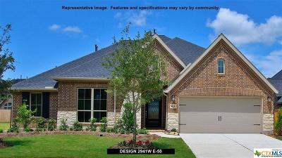 Seguin Single Family Home For Sale: 2909 Countryside Path