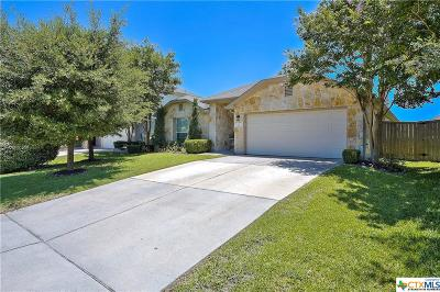 Round Rock Single Family Home For Sale: 807 Broken Trace Court