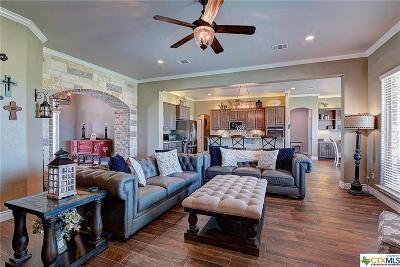 Salado Single Family Home For Sale: 4210 Green Creek Drive