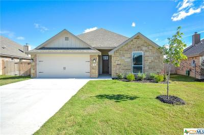 Temple TX Single Family Home For Sale: $271,500