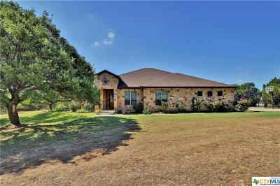 Salado Single Family Home For Sale: 1387 Hidden Springs