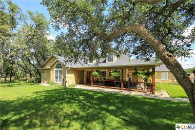 Wimberley TX Single Family Home For Sale: $599,000