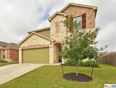 Buda Single Family Home For Sale: 343 Stella Gold