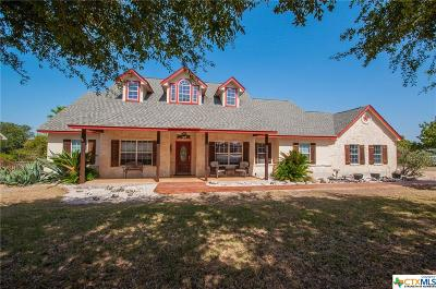 Canyon Lake Single Family Home For Sale: 742 Airline Drive