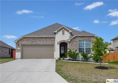 Harker Heights Single Family Home For Sale: 849 Olive Lane