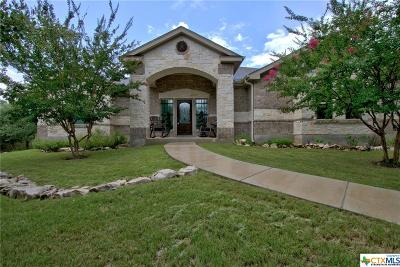 New Braunfels Single Family Home For Sale: 119 Winding View