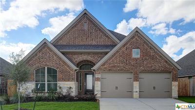 Seguin Single Family Home For Sale: 2904 Glen View