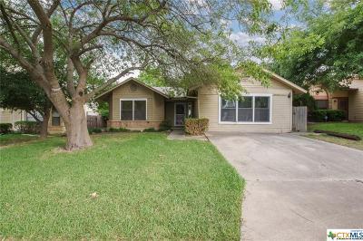 San Antonio Single Family Home For Sale: 7818 Falcon Ridge