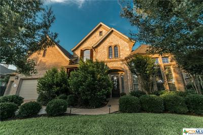 Round Rock Single Family Home For Sale: 3213 Andice