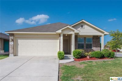 New Braunfels Single Family Home For Sale: 2145 Sinclair