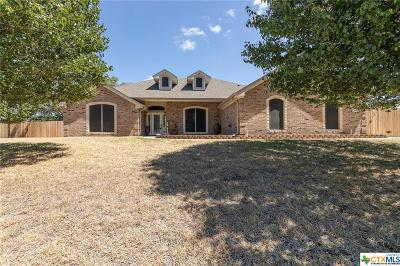Kempner Single Family Home For Sale: 3992 Wells