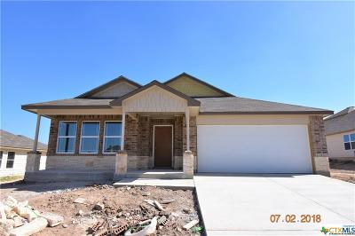 Harker Heights, Killeen, Temple Single Family Home For Sale: 3804 Appalachian Trail