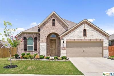 Buda Single Family Home For Sale: 182 Joseph