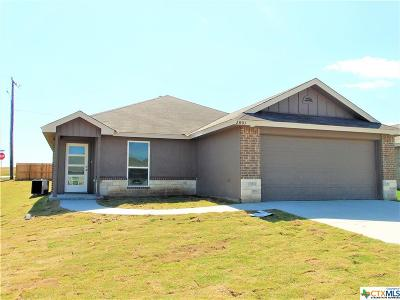 Harker Heights, Killeen, Temple Single Family Home For Sale: 2801 Turning Creek