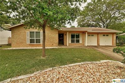 Austin Single Family Home For Sale: 2303 Whitestone Drive