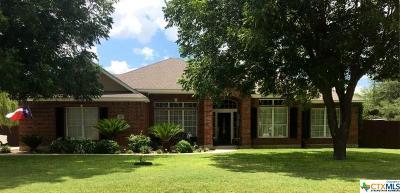 Seguin Single Family Home For Sale: 180 Plantation Drive