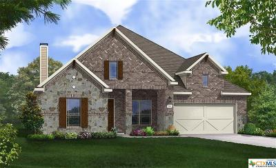 New Braunfels Single Family Home For Sale: 1001 Carriage