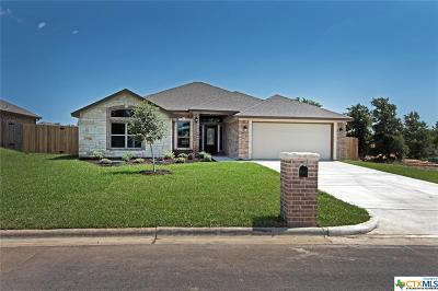 Belton Single Family Home For Sale: 1820 Lacy Ridge