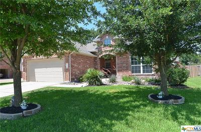 Round Rock Single Family Home For Sale: 2614 Plantation Street