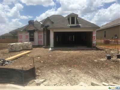 Harker Heights, Killeen, Temple Single Family Home For Sale: 1656 Hillside Drive