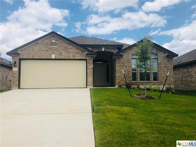 Belton Single Family Home For Sale: 5321 Fenton Drive