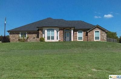 Kempner Single Family Home For Sale: 272 County Road 3351
