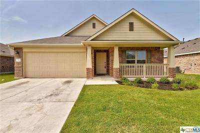 Hutto Single Family Home For Sale: 306 Hibiscus Drive