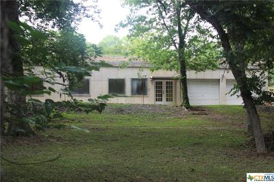 Seguin Single Family Home For Sale: 650 River Springs Drive