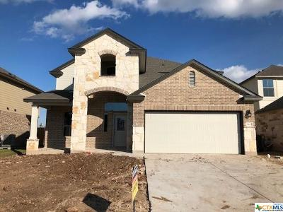 Belton TX Single Family Home For Sale: $208,155