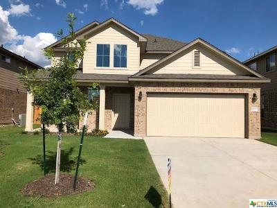 Belton TX Single Family Home For Sale: $237,195
