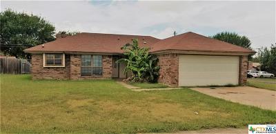 Single Family Home For Sale: 1607 Sagebrush