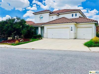 San Antonio Single Family Home For Sale: 18326 Muir Glen Drive