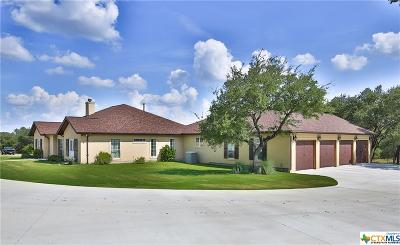 Comal County Single Family Home For Sale: 1159 Astral