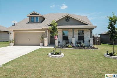 New Braunfels TX Single Family Home For Sale: $233,900
