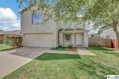 New Braunfels Single Family Home For Sale: 432 Copper Hill Drive