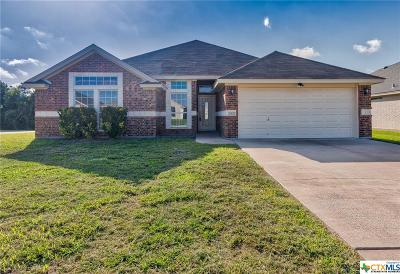 Harker Heights Single Family Home For Sale: 1927 Merlin Drive
