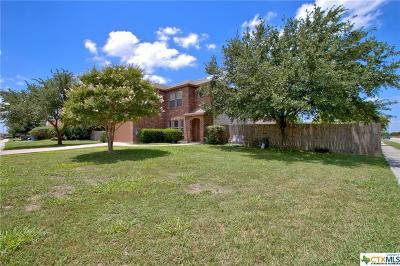 Seguin Single Family Home For Sale: 3420 Sante Fe