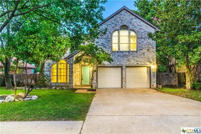 Round Rock Single Family Home For Sale: 1009 Oaklands Drive
