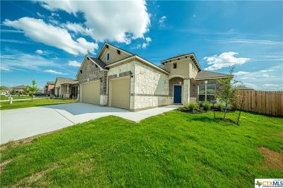New Braunfels Single Family Home For Sale: 845 Gray Cloud