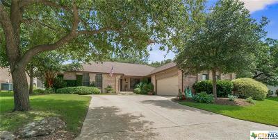 San Antonio Single Family Home For Sale: 19759 Encino Way