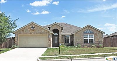 Killeen Single Family Home For Sale: 206 Rowdy Drive