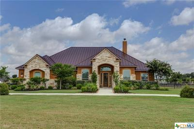 New Braunfels TX Single Family Home For Sale: $669,500