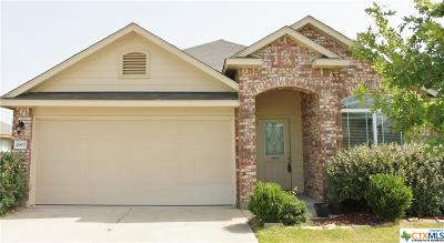 Killeen Single Family Home For Sale: 4907 Bayer Hollow Drive