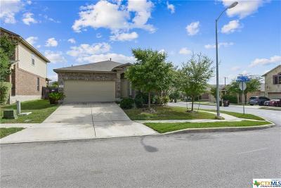 San Antonio Single Family Home For Sale: 12203 Dewitt Way