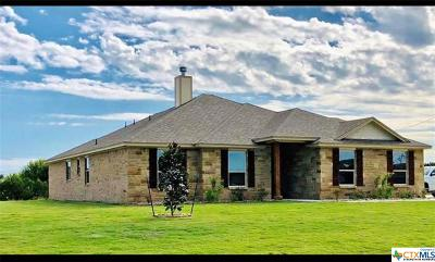 Lampasas County Single Family Home For Sale: 248 Cr 4709