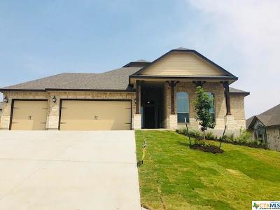 Belton Single Family Home For Sale: 4406 Guildford Drive
