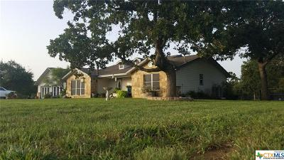 Guadalupe County Single Family Home For Sale: 1003 Mesquite Pass